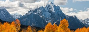 Fall in Jackson Hole Adventure Package